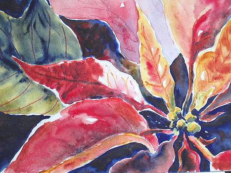 Holiday Poinsettia by Corynne Hilbert