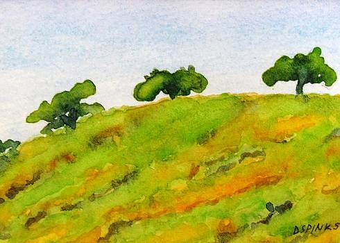 Hollister Hills III by Debra Spinks