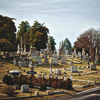 Hollywood Cemetery 1 by Brandy Ford