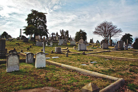 Hollywood Cemetery 2 by Brandy Ford