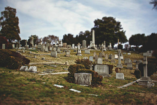 Hollywood Cemetery 3 by Brandy Ford