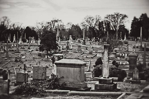 Hollywood Cemetery 5 by Brandy Ford