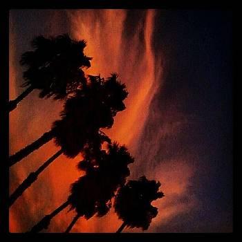 Hollywood Sunset #ilovela by Christy Borgman