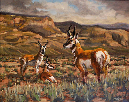 J P Childress - Home on the Range