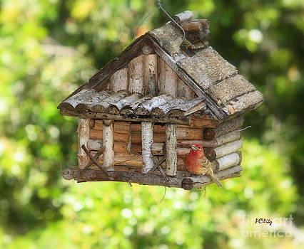 Patrick Witz - Home Tweet Home
