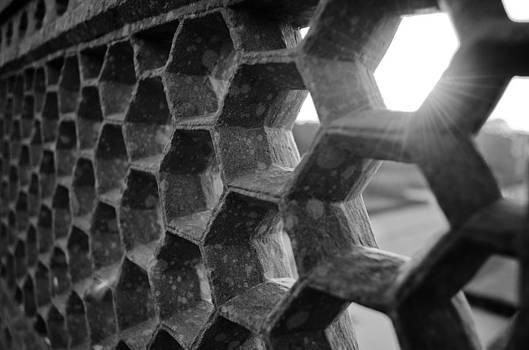 HoneyBee Hive by Sandeep Pandey