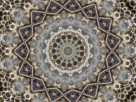 Kristie  Bonnewell - Honeycomb