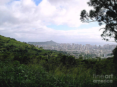 Honolulu from the Top by Ruth Kongaika