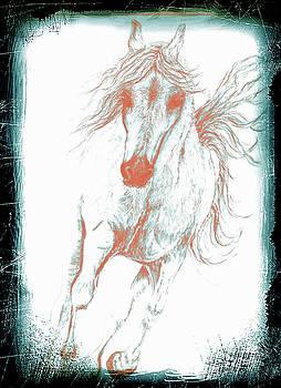 Hoof Beats Red Ghost by Teresa Vecere