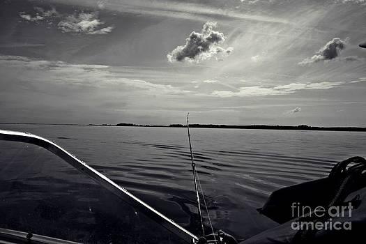 Hook Line and Sinker by Scott Allison