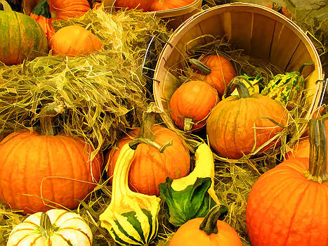Chantal PhotoPix - Horn of Plenty - Autumn Harvest Displays - Orange Gourd Pumpkins in Wooden Bushels on Hay Bales