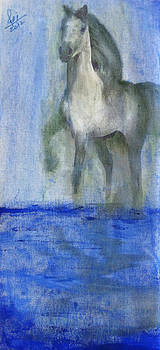 Horse at river by Reza Naqvi