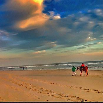 Horse Back Riding Between #thepier & by Pete Tountas