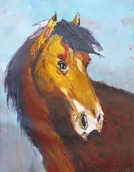 Horse - Knife Painting by Rejeena Niaz