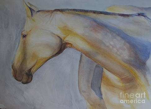 Horse by Paige Hval