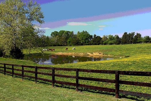 Horse Pasture by Bob Whitt