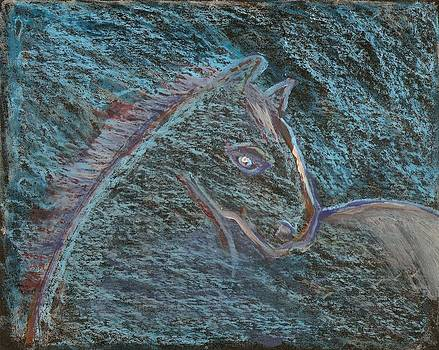 Horse by Peter  McPartlin