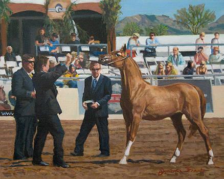 Horse Show by Joanna Franke
