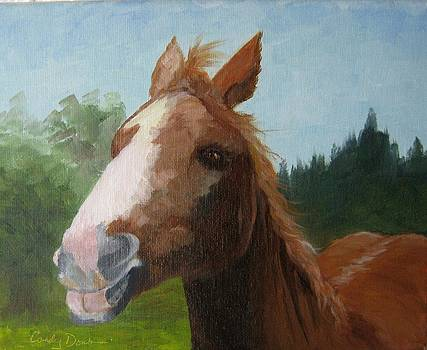 Horse Talk by Candace Doub