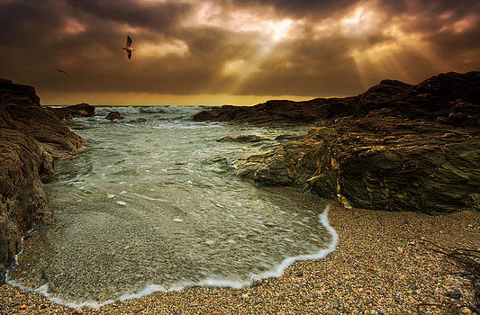 Horseley Cove by Mark Leader
