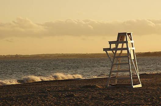 Horseneck Beach by Corrie McDermott