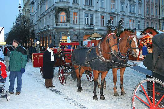 Horses in Prague by Leontine Vandermeer