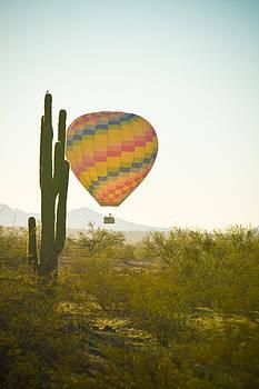 James BO Insogna - Hot Air Balloon over the Arizona Desert With Giant Saguaro