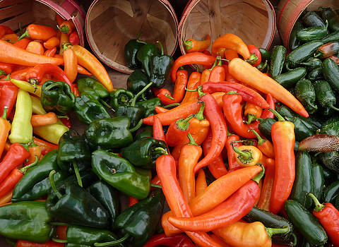 Hot Peppers 2 by Andrea Lucas