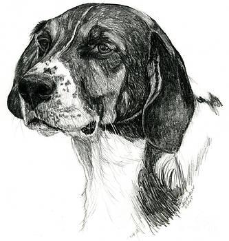 Hound by Deb Gardner