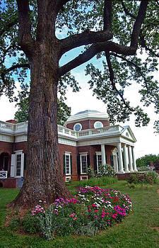 House of Thomas Jefferson by Paul Pobiak