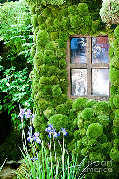 Simon Bratt Photography LRPS - House with moss walls