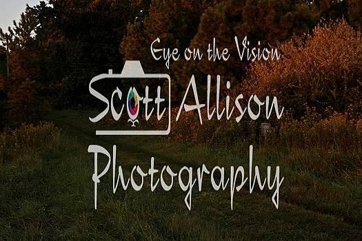Hsh92289 by Scott Allison