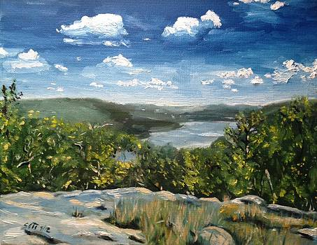 Hudson River View from Bear Mountan by Victor SOTO