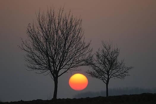 Hugging the Sun by Erik Tanghe
