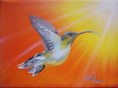 Hummingbird by Beata Rosslerova