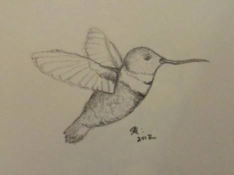 Hummingbird Flight by April Higney