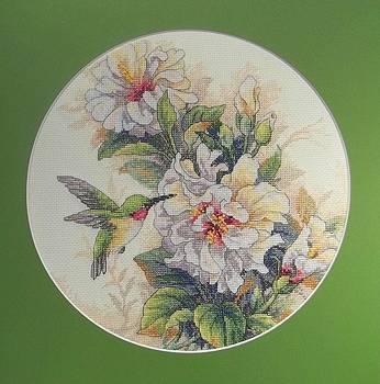Hummingbird by Sara Lewis