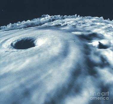 Padre Art - Hurricane Diana from Above