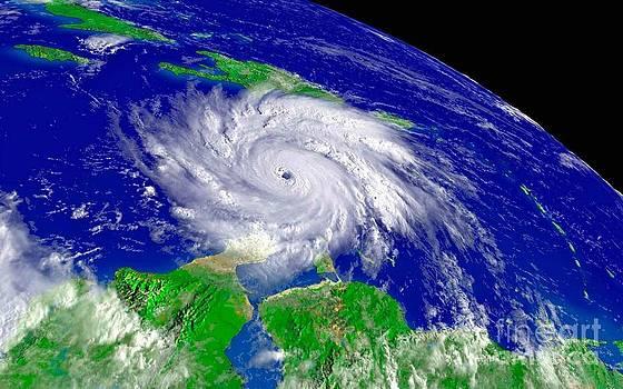 Padre Art - Hurricane