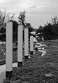 Kantilal Patel - Hyacinth Pillars