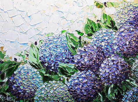 Hydrangea at Daybreak by Christine Krainock