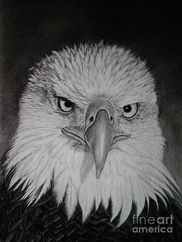 I am watching you by Paula Ludovino