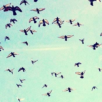 i Believe I Can Fly) #sky #birds by Irina Liakh