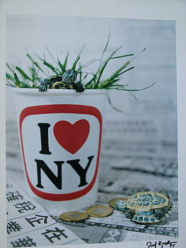 I Love Ny by Joel Beck