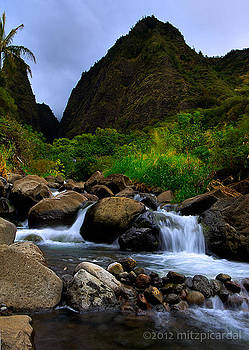Iao Needle by Mitchell Picardal