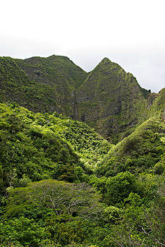 Marilyn Wilson - Iao Valley Mountains