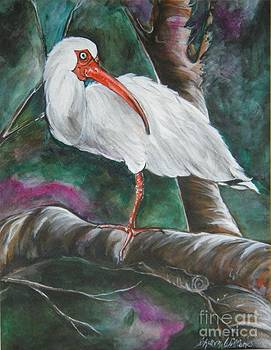 Ibis II by Sharon Wilkens