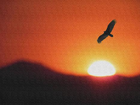 Icarus by Jesus Nicolas Castanon
