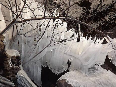 Ice on the Lake by Abe Fogle