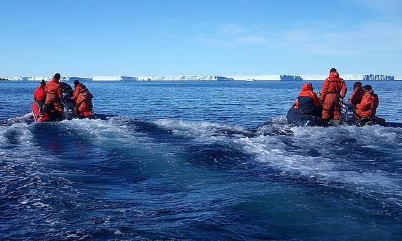 Iceberg Hunters by David Barringhaus